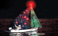 Newport Beach Christmas Boat Parade Home
